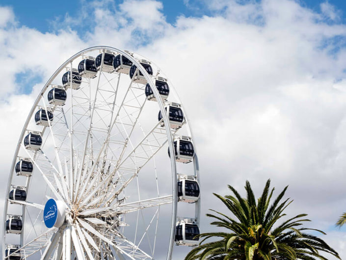 Debra Somerville Photo, Photography, Photographer, Southern Florida, Fine Art Africa, FERRISWHEEL
